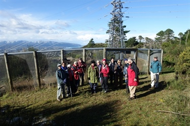 ZEALANDIA Walking Group