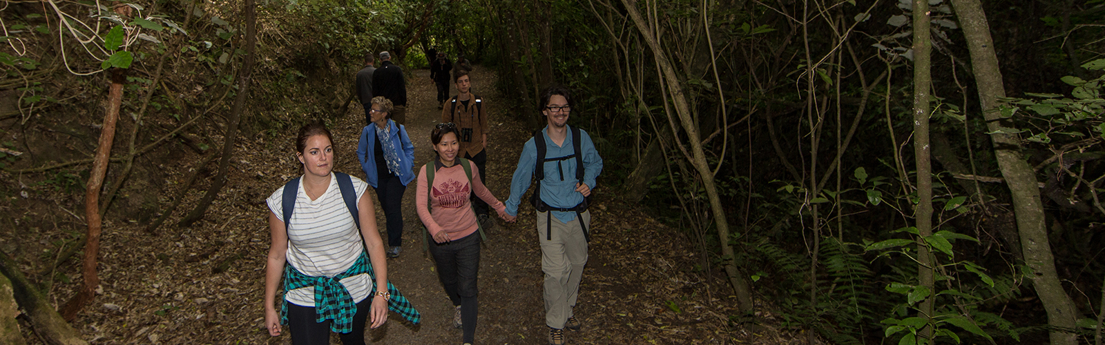 Tour group at ZEALANDIA