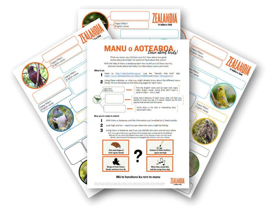 Manu o Aotearoa work sheets in overview