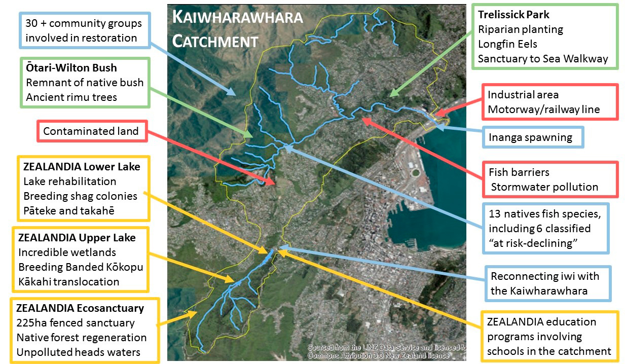 Infographic about the Kaiwharawhara Stream catchment