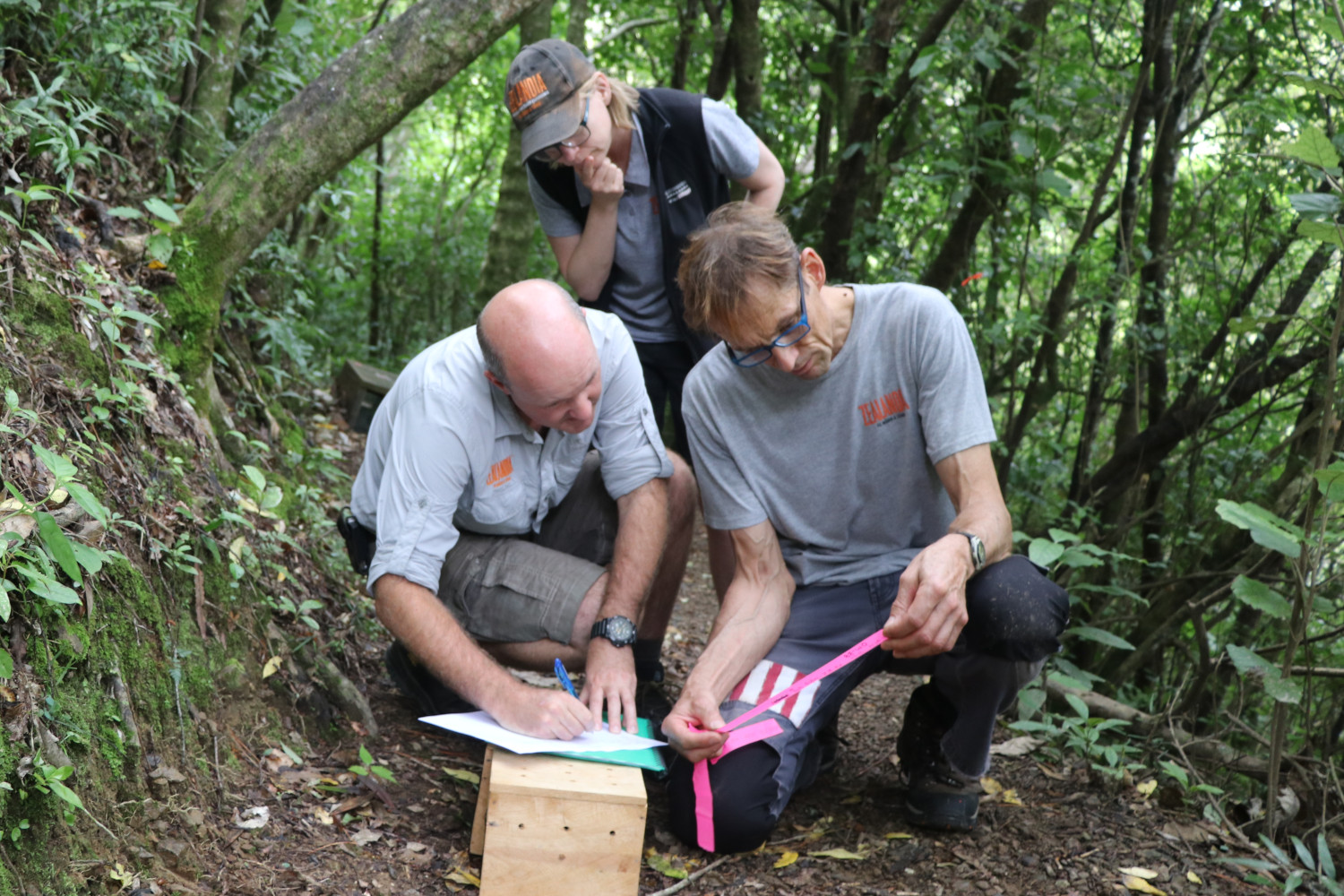 Staff and volunteers at Zealandia involved in some of the work that revolves around science in the sanctuary.