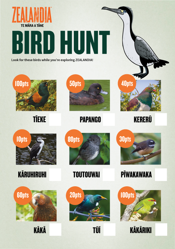 Bird Hunt activity sheet