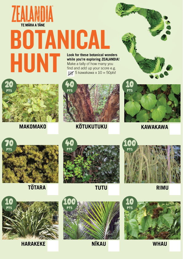 Botanical Hunt activity sheet