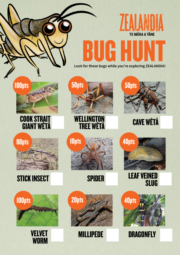 Bug Hunt activity sheet
