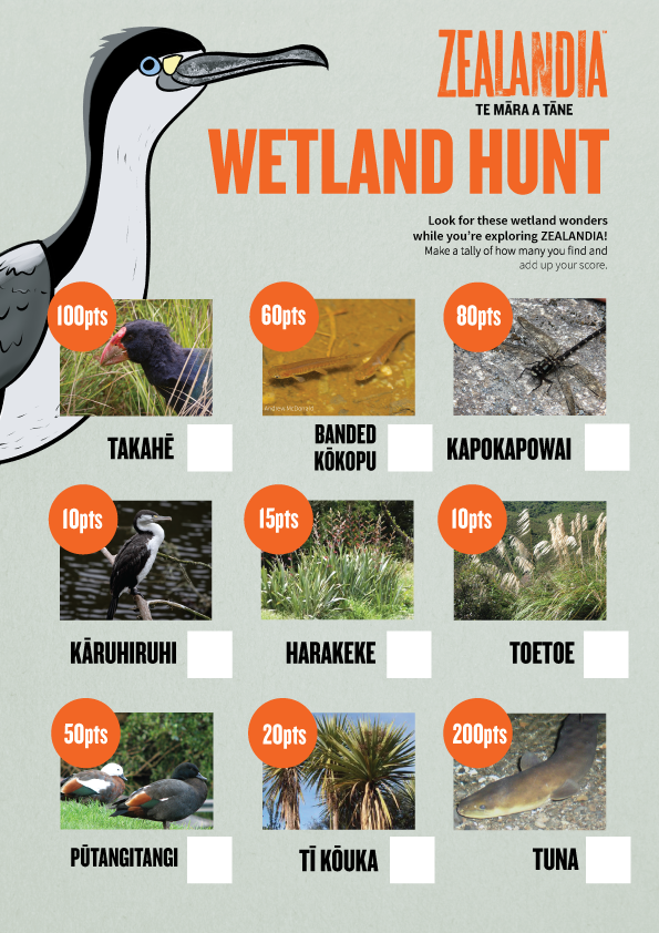 Wetland Hunt activity sheets